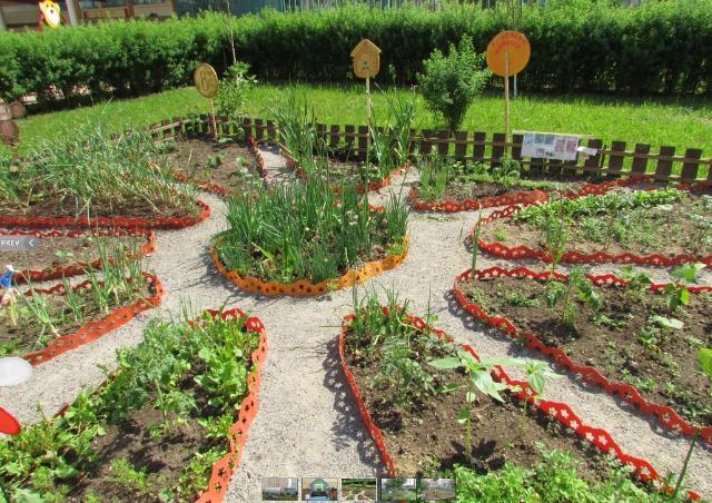 Огород на участке в детском саду оформление