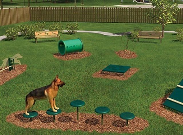 Как сделать собачью площадку